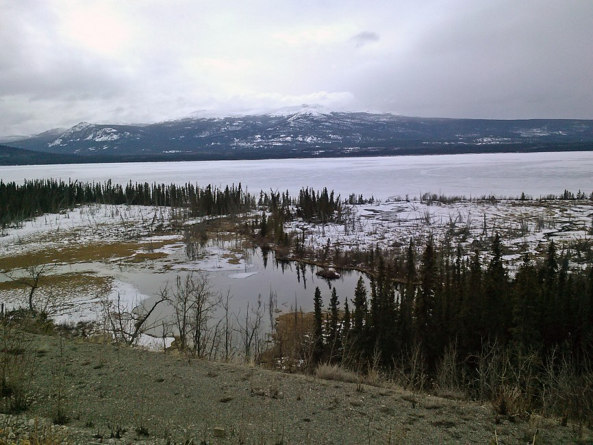 Wetland That Never Freezes