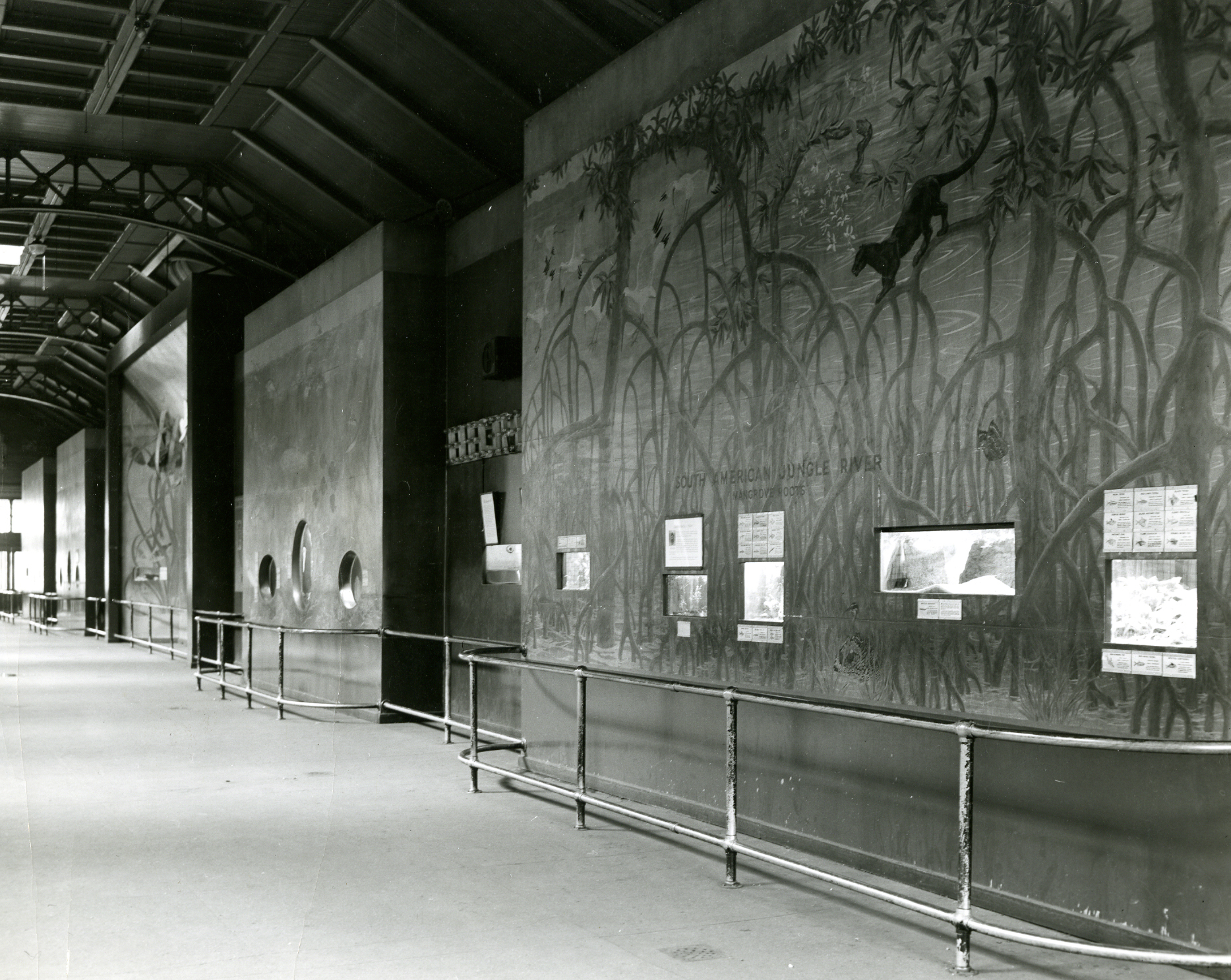 That Time the New York Aquarium was in the Bronx Zoo Lion House