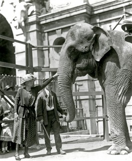 The Climax of Happiness: Helen Keller Visits the Bronx Zoo