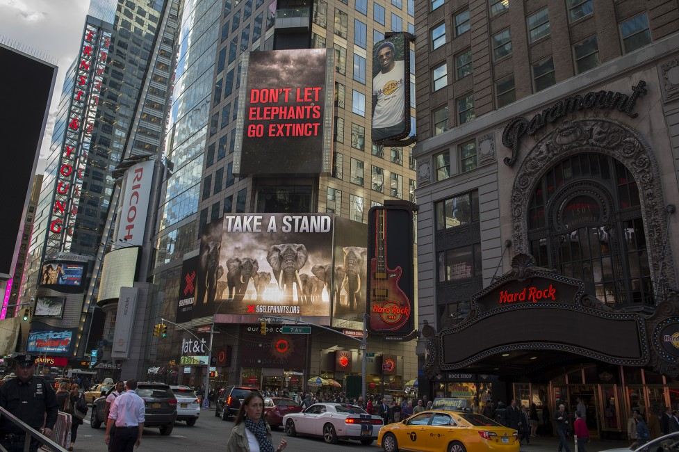 Take A Stand for Elephants at Times Square