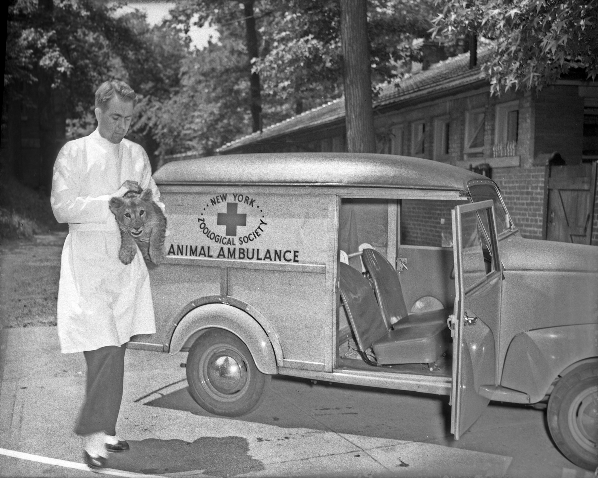 100th Anniversary of the Bronx Zoo's First Animal Hospital