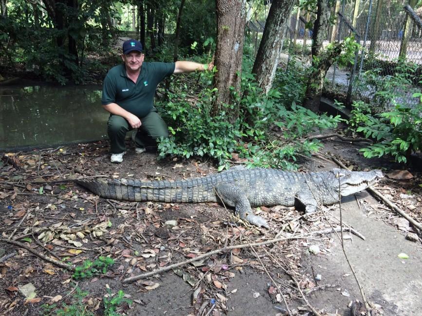 Rare Reptiles in Cambodia