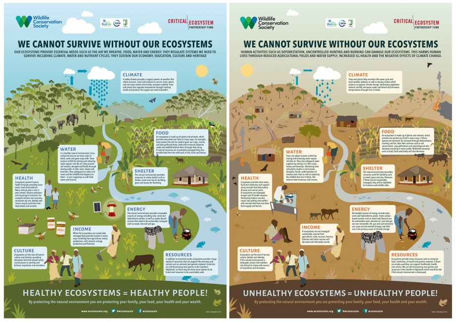 Valuing Biodiversity