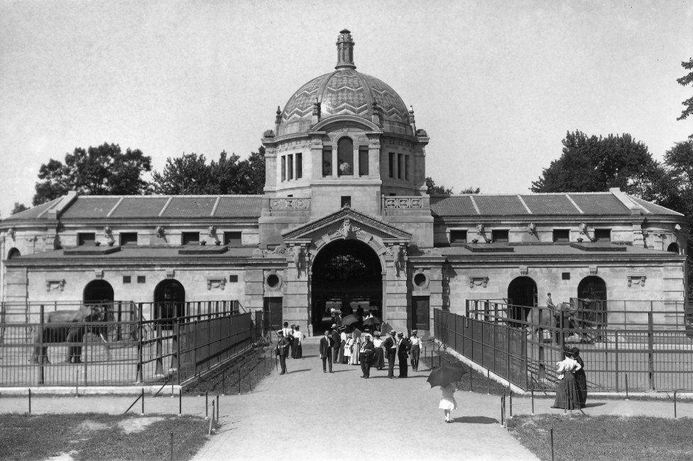 Zoo Center at the Bronx Zoo Marks 110th Year