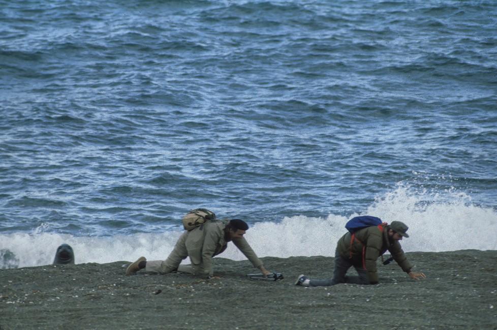 Seal Beach Crawl