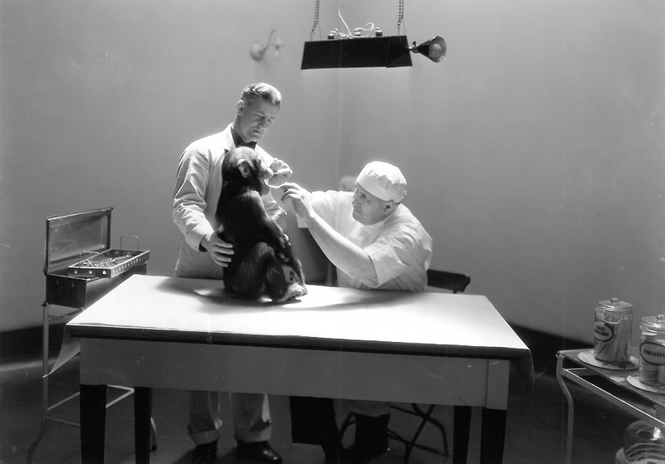 A Tradition of Excellent Veterinary Care: Charles Victor Noback