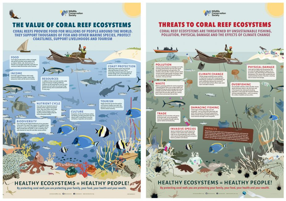Coral Reef Awareness from East Africa to Myanmar