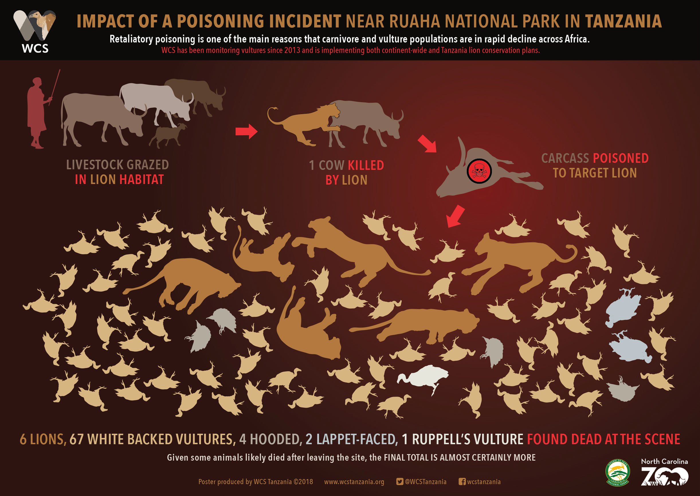 Vultures and Poisoning